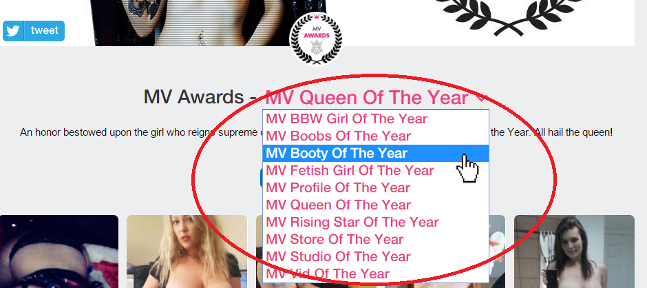 ManyVids Award Categories